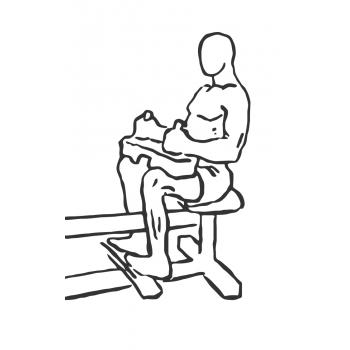 seated sit up machine