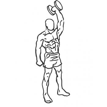 Standing One Arm Triceps Extension - Gymwolf