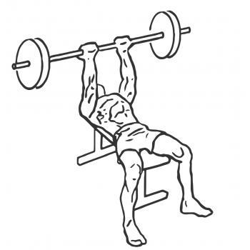 Reverse Triceps Bench Press Gymwolf