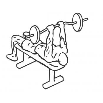 Lying Triceps Press for building the triceps