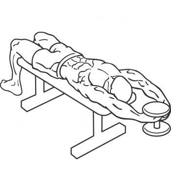 Straight Arm Pullover - Gymwolf   350 x 350 jpeg 16kB